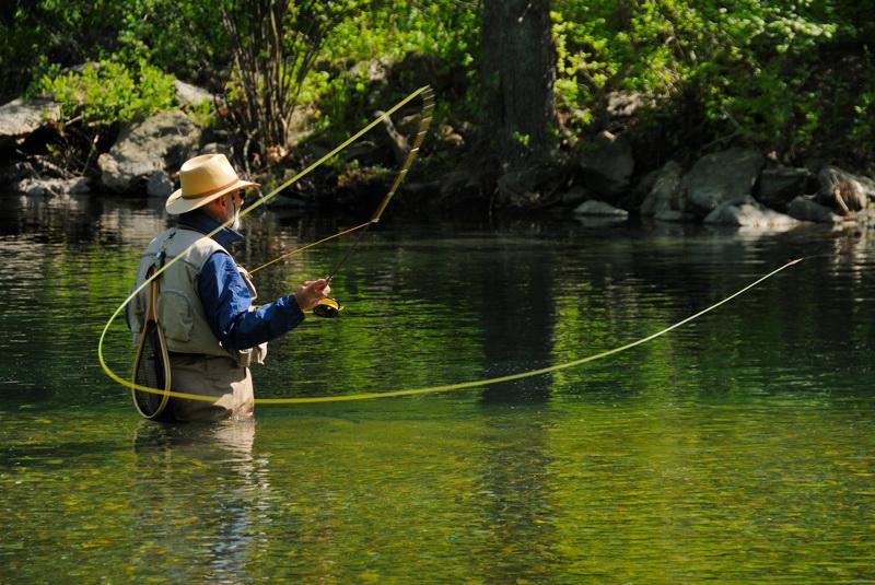 ловля рыбы на удочку в картинках того, эта стрижка